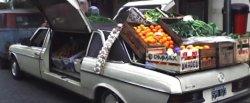 maglownica do Mercedes-Benz 240