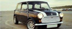 maglownica do Mini 1000