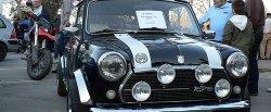 maglownica do Mini 1300