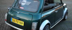 maglownica do Rover Mini